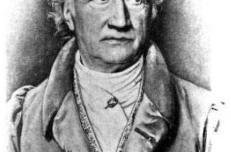 McKillop, Alan D.: Goethe and literary criticism